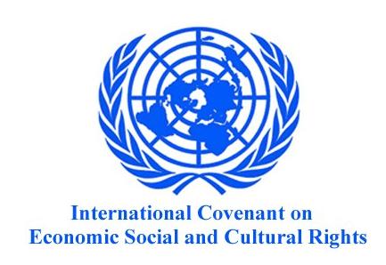 Bundesvereinigung Trans* Kritisiert Im UN-Schattenbericht Deutschlands Menschenrechtsverletzungen