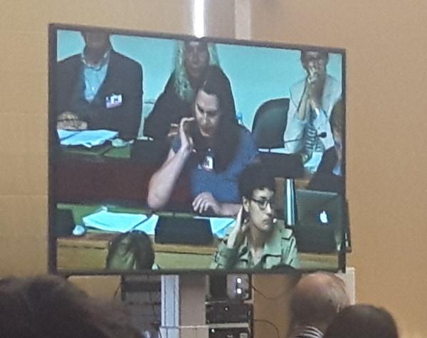 Kim Trau Hält Für Die BVT* Eine Rede Im Ausschuss Zum UN-Sozialpakt Im September 2018.